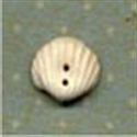 Picture of Shell