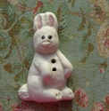Picture of Bunny White